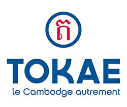 logo tokae