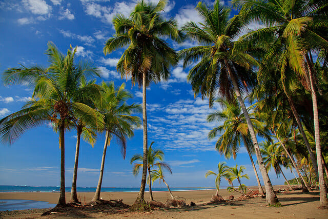 Le Costa Rica, ça vous tente ?