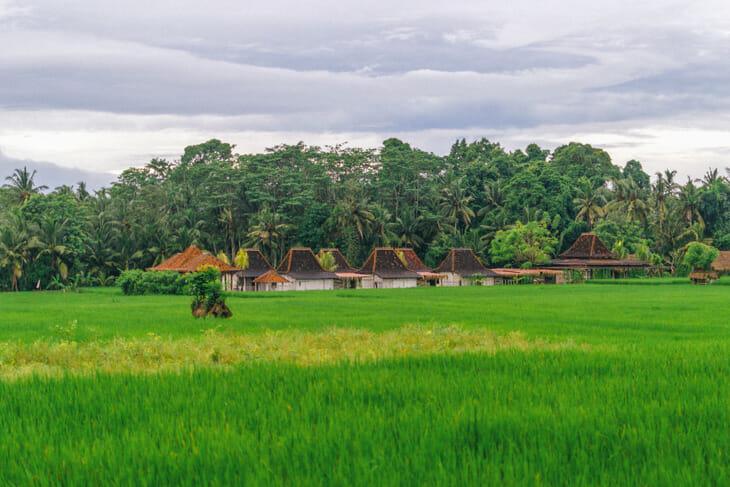 Ubud, l'un des HUBS des nomades digitaux